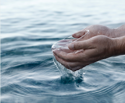 Household Baptism: Resources