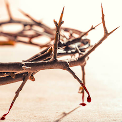 Notre Dame's Crown of Thorns